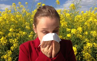 do air purifiers work for allergies