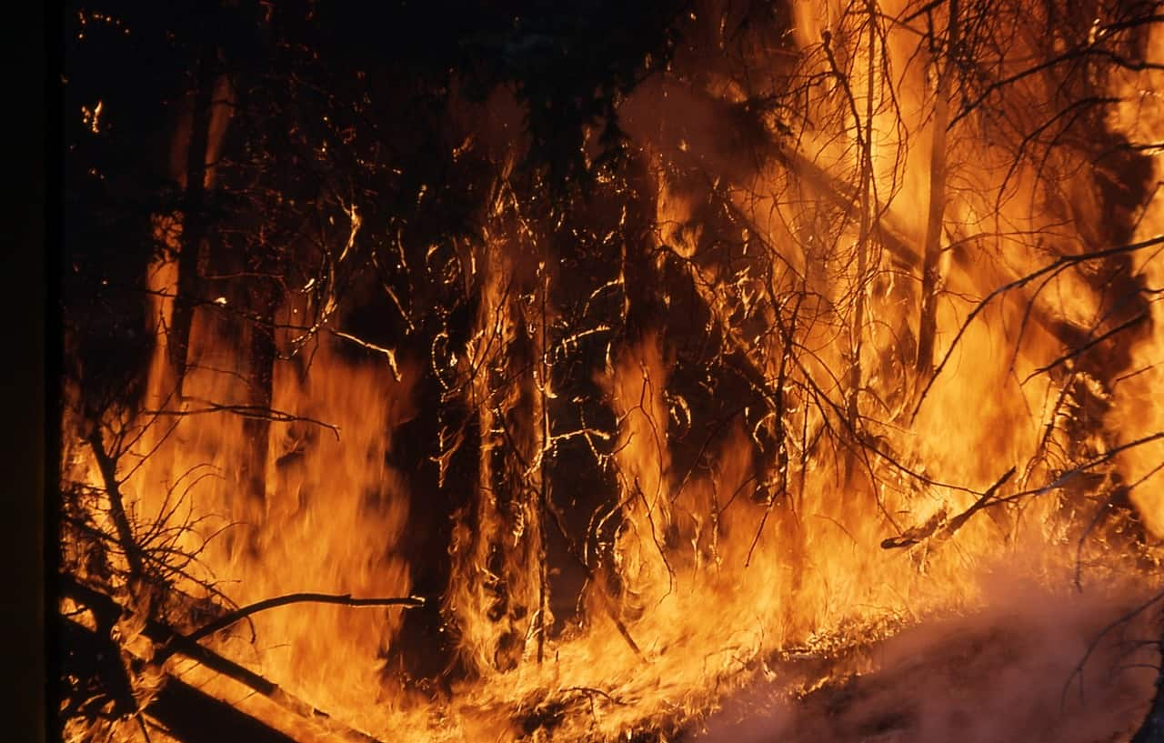 Wildfire, of the type currently raging in Tennessee