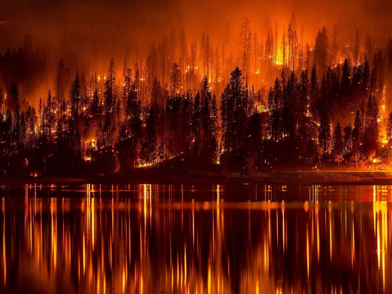 Oregon Wildfires Protecting Yourself From Forest Fire Air