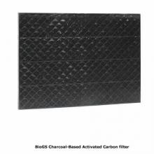 rabbit-air-bio-gs-activated-carbon-filter-image.jpg